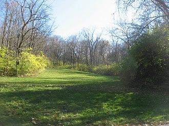 Benham Mound - Looking up a hillside toward the mound