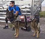 Wounded Warriors Air Force Trials 2014 140409-F-YX485-009.jpg