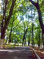 Zagatala City Park - www.Qaxlilar.tk - panoramio (10).jpg