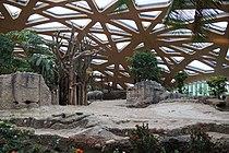 Zoo Zürich Kaeng Krachan Elefantenpark 2.JPG