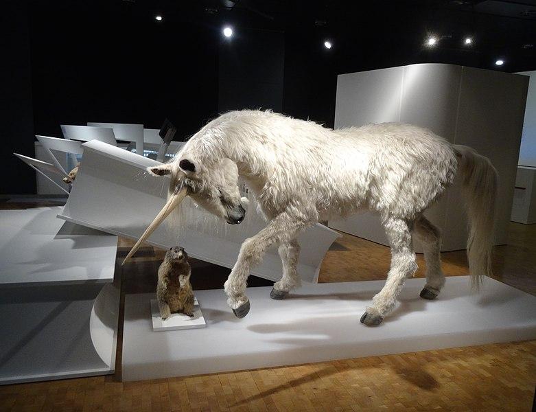 Datei:Zoologisches Museum Einhorn.jpg