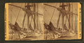 """Barque ""Parana"" shrouded in ice, Mar. 6, 1873, by W. H. Sherman.png"