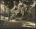 """Chatham,"" Colonel Daniel Bradford Devore house, 120 Chatham Lane, Fredericksburg, Virginia. East terrace LCCN2009633446.jpg"