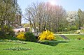 Ботанічний сад. Місто Хмельницький.jpg