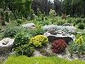 Ботанічний сад ДНУ 47.JPG