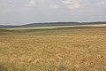 Вид к северу - panoramio.jpg