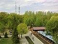Вид с колеса обозрения - panoramio - Николай Куркин.jpg