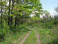 Дендрологічний парк 134.jpg