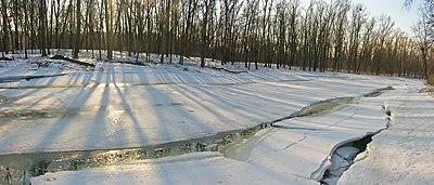 Дніпровські острови Зима 01.jpg