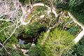 Дорожки парка Регалейра (11610329106).jpg