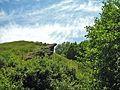 Зелёная скала - panoramio.jpg