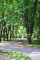 Наводницкий парк в Киеве. Фото 23.jpg