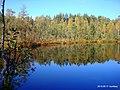 Озеро Захарничи 4 - panoramio.jpg