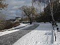Пейзажная аллея зимой.jpg
