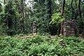 Руины церкви святого Георгия в Белградском лесу, Стамбул - 1.JPG