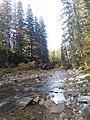 Річка Прутець Чемигівський 4. IMG.jpg