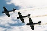 Самолеты во время пикетирования.jpg