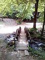 Смоларски водопад 16.jpg