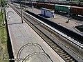 Станція Петрівка - panoramio (1).jpg
