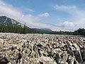 Таганай - Большая каменная река - panoramio (3).jpg