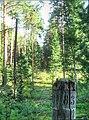 Темерчинское урочище - квартальный столб IMG 1474 IMG 1475-2 images tonemapped.jpg
