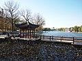 东湖 - East Lake - 2011.11 - panoramio.jpg