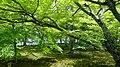 京都 皇宫 - panoramio.jpg