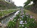島原城その1 - panoramio.jpg