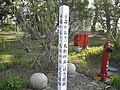 水森かおり「鳥取砂丘」記念植樹 - panoramio.jpg