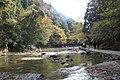 粟又の滝遊歩道 - panoramio (16).jpg