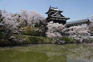 Yamatokōriyama - Yamato Koriyama Castle