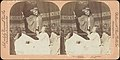 -Group of 13 Stereograph Views of Families and Children- MET DP73507.jpg