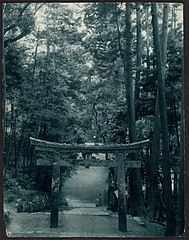 -Tirii Gate Marking the Entrance to a Shinto Shrine- MET DP136252.jpg