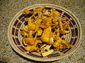 090811 anacates chanterelles.JPG