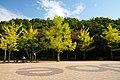 151017 Kobe Sports Park Kobe Japan12n.jpg