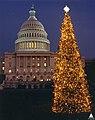 1990 U.S. Capitol Christmas Tree (31805188955).jpg