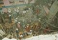 19950629삼풍백화점 붕괴 사고12.jpg