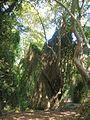 2009-09-30-Rentina-DSCN8941.jpg