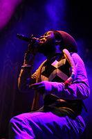 2013-08-25 Chiemsee Reggae Summer - Iba Mahr 5941.JPG