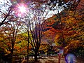 2014-11-24 Sekiganji 石龕寺 DSCF4750.jpg