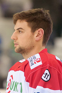 Alexander Pallestrang Austrian ice hockey player