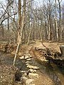 2016-02-08 12 55 18 View north along the Gerry Connolly Cross County Trail as it crosses the Rocky Branch of Difficult Run via stepping-stones between Miller Heights Road and Vale Road in Oakton, Fairfax County, Virginia.jpg