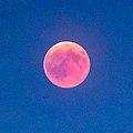 2017 Total Lunar Eclipse (43663340212).jpg