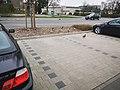 2021-04-16 Enten am REWE Parkplatz Tauberbischofsheim 3.jpg