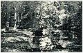 20307-Großenhain-1917-Wasserpartie im Stadtpark-Brück & Sohn Kunstverlag.jpg