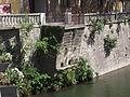 25 Pont Vell d'Olot - Ripoll.jpg