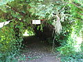 2 Zámek Veltrusy, kuchyňská zahrada.jpg