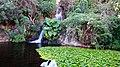 38400 Punta Brava, Santa Cruz de Tenerife, Spain - panoramio (4).jpg