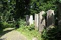 9847viki Cmentarz żydowski na Ślężnej. Foto Barbara Maliszewska.jpg