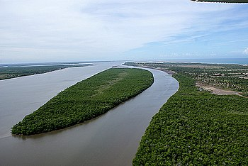 Bahia Mangroves Wikipedia